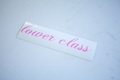 Lower Class Sticker